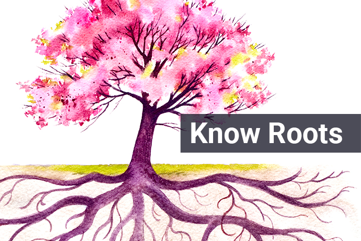 Know Roots Image