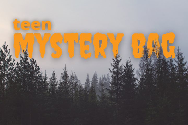 teen mystery bag creepy font in front of foggy trees